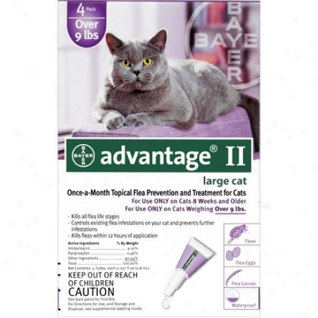 Advantage 4pk Cat Purple 10 Lbs And Over