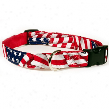 "American Grand Kwik Klip Adjustable Dog Collar 1"" X 18"" To 26"""