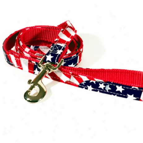 "American Grand Lead For Dogs 3/4"" X 4'"