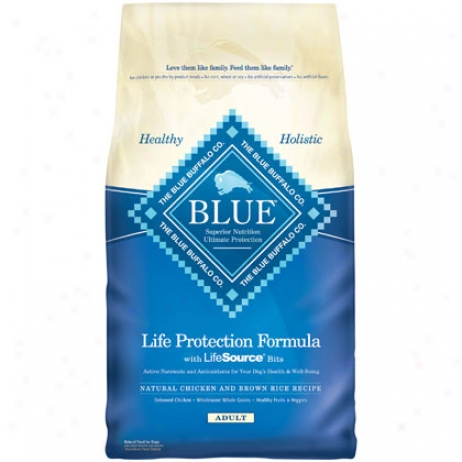 Blue Buffalo Adult Dry Dog Food
