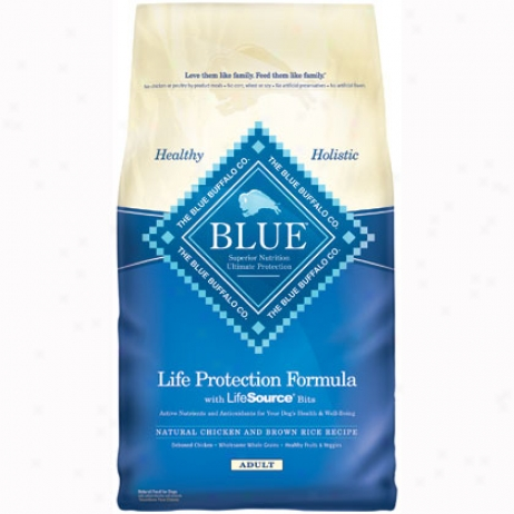 Blue Buuffalo Dry Dog Food