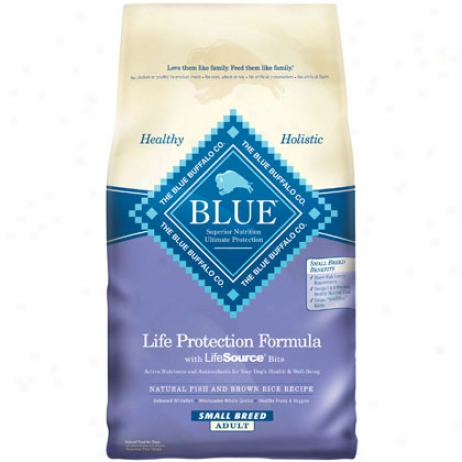 Is Blue Buffalo cat food better than Science Diet?