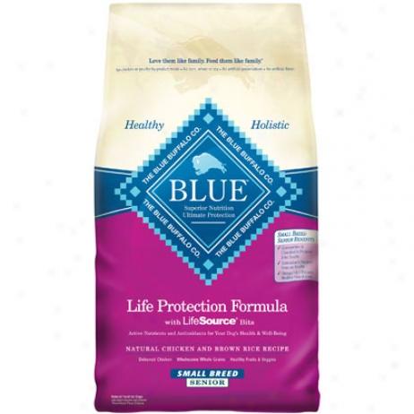 Blue Senior Small Breed Dry