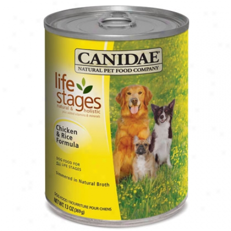 Canidae Canned Dog Food7
