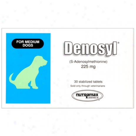 Denoysl 225 Mg 30 Ct For Medium Dogs 13 To 34 Lbs.