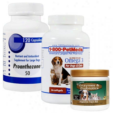 Endocrine Package Deal-save $6