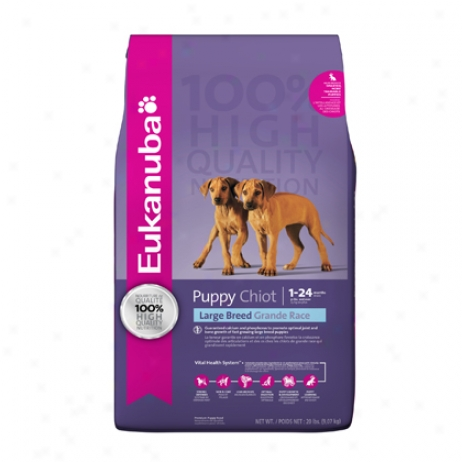 Eukanuba Dry Puppy Food