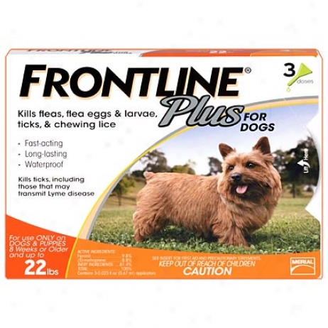 Frontline Plus 3pk For Small Dogs Up To 22 Lbs