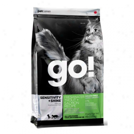 Go! Dry Cat Food Trout