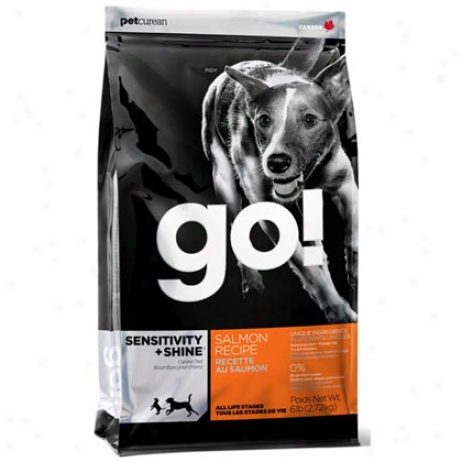 Go! Dry Dog Food Salmon