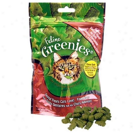 Greenies Dehtal Treatx For Cats Salmon Flavor 3.0 Oz