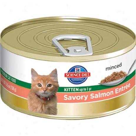 Hills Science Diet Canned Entree Original Kitten Food
