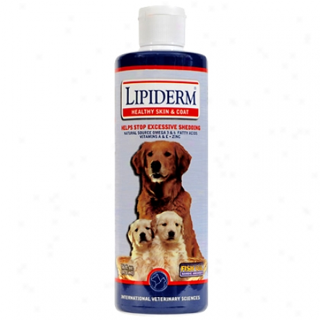 Lipiderm Liquid For Small & Medium Dogs 16oz Bottle