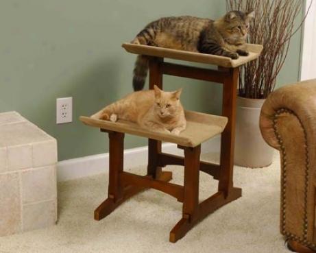 Mr Herzher Increase twofold Cat Perch