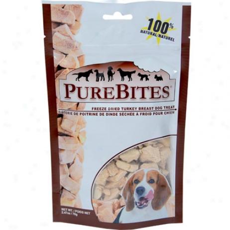 Pure Bites