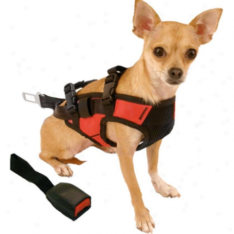 Snoozer Pet Safety Harness And Adapter - Car Travel