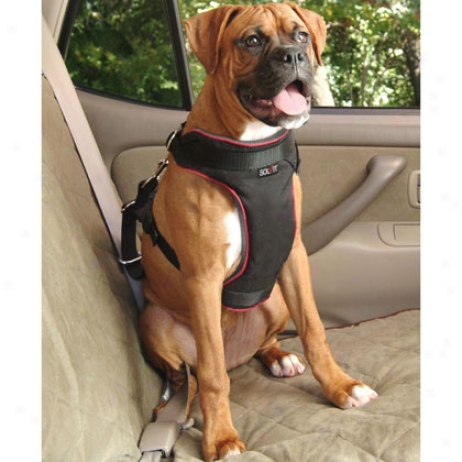 Solvit Dog Vehicle Harness