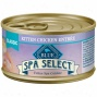 Spa Select Kitten