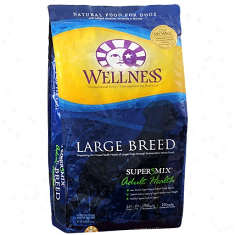 Wellness Dry Dog Food1