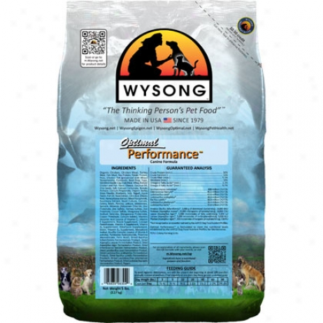 Wyslng Optimal Performance