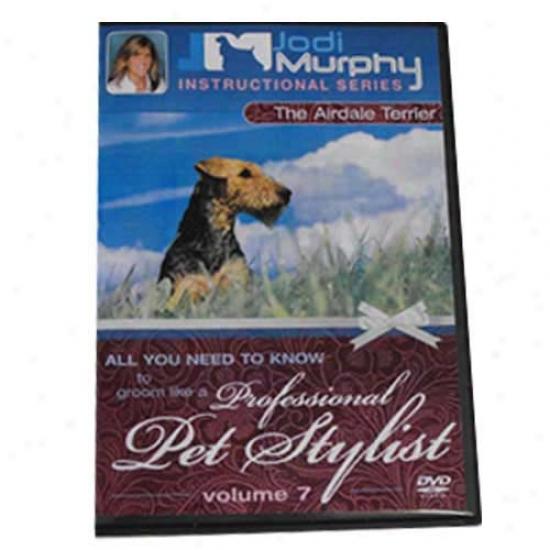Airedale Terrier Grooming Dvd By Jodi Murphy