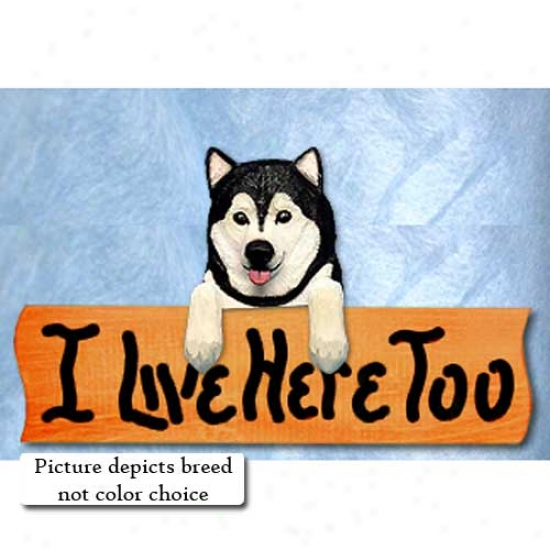 Alaskan Malamute I Live Here Too Maple Finish Sign Red And White