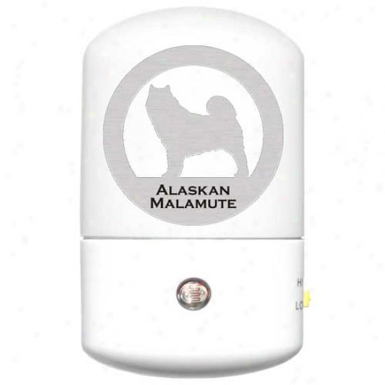 Alaskan Malamute Led Nightt Light