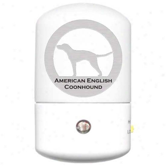 American English CoonhoundL ed Night Light