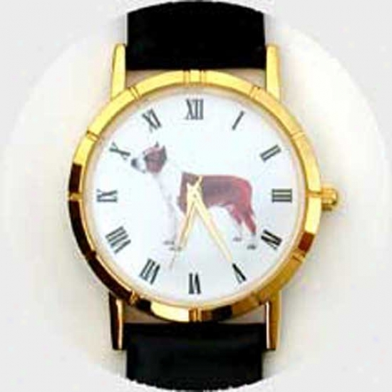 American Staffordshire Terrier Watch - Large Face, Negro Leatjer