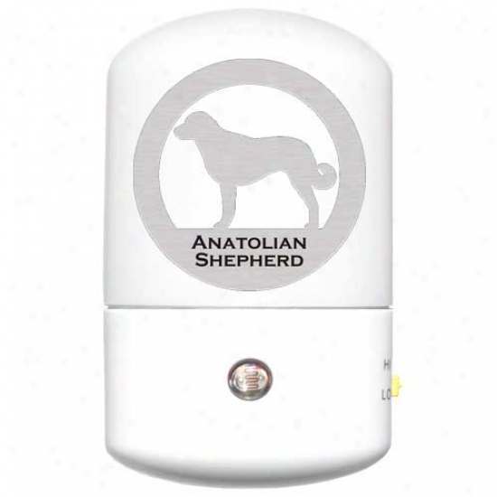 Anatolian Shepherd Dog Led Night Light