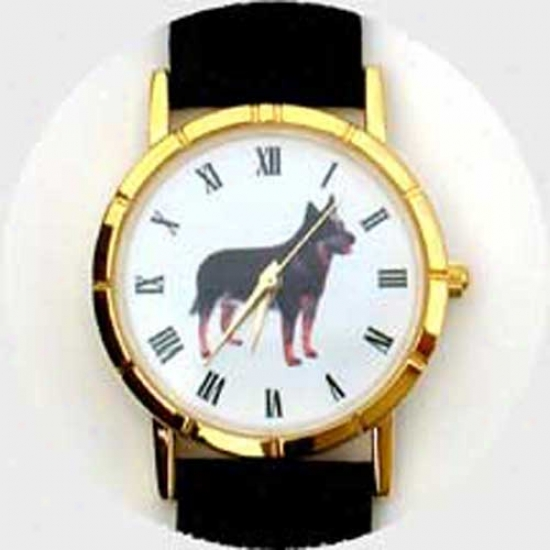 Australian Cattle Dog Watch - Large Face, Black Leather