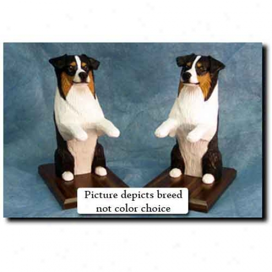 Australian Shephrrd Bookends Red Tri
