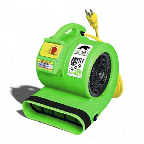B-air Grizzly 1 Hp Dryer (green)