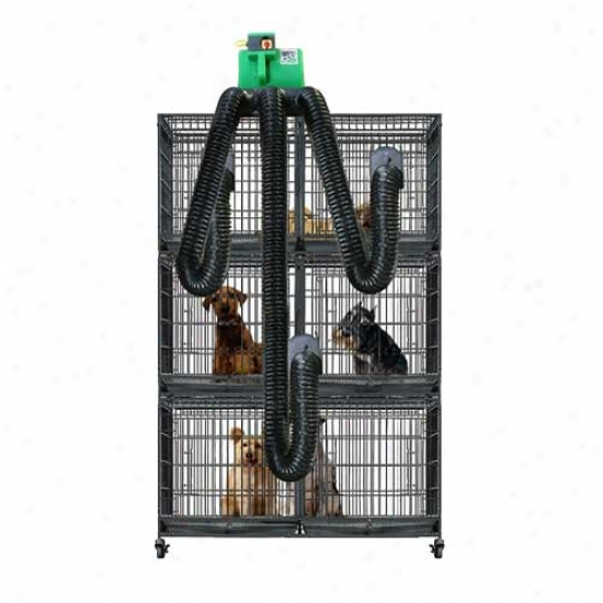 B-air Grizzly Dryee Multi Cage Den Dryer Kit