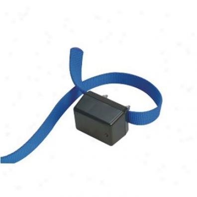 Baro Inhibitor Collar - (bc-50b) - Innotek