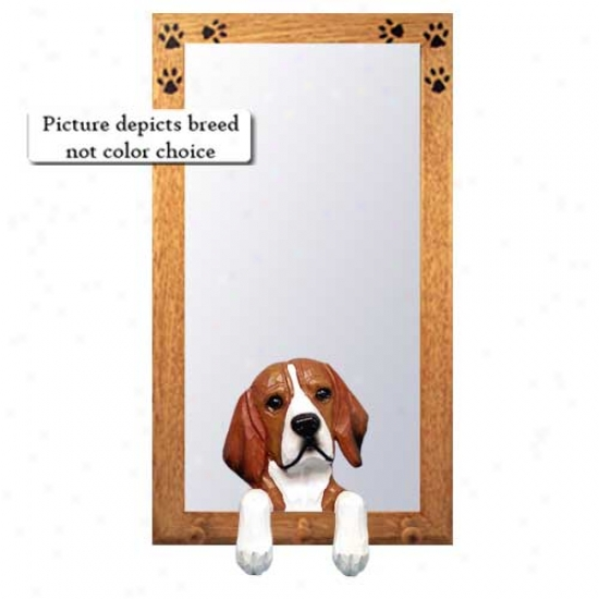 Beagle Halll Mirror By the side of Oak Golden Frame