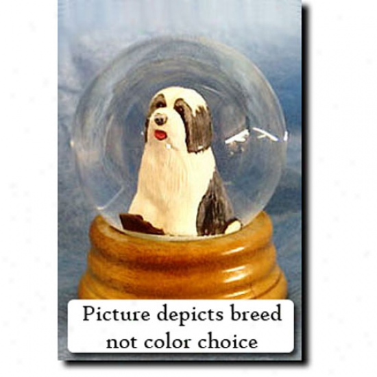 Bearded Collie (brown And White) Musical Snow Globe