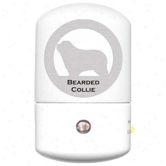 Bearded Collie Led Night Light