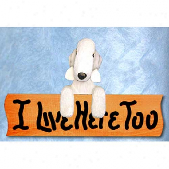 Beflington Terrier I Live Here Too Maple Finish Sign White