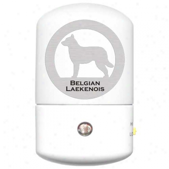 Belgian Laekenois Led Night Light