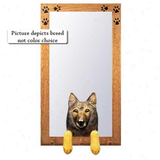 Belgian Tervuren Hall Mirror With Oak Golden Frame