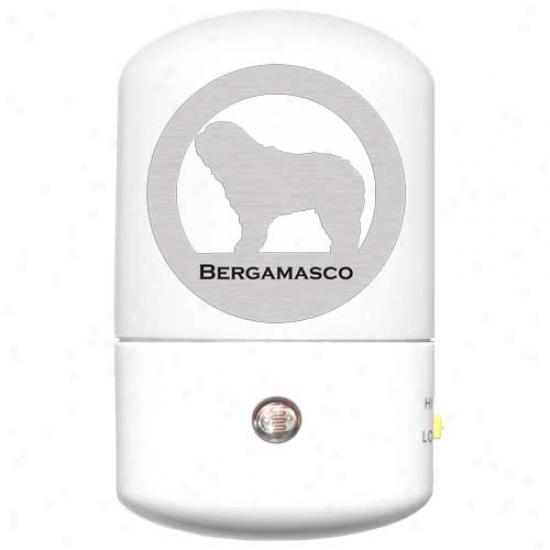 Bergamasco Led Night Light