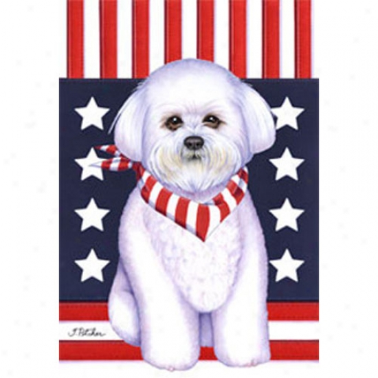 Bichon Frise Patriotic Breed Flag
