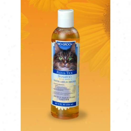 Bio-groom Flea And Tick Shampoo For Cats, 8oz Bottle