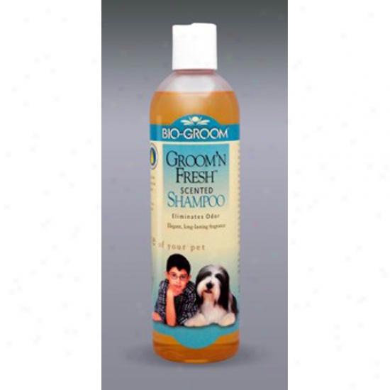 Bio-groo mGroom N Fresh Shakpoo, 12oz