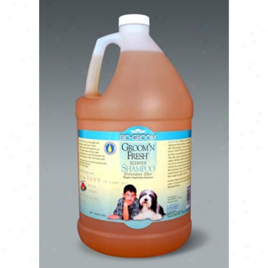 Bio-groom Groom N Fresh Shampoo, Gallon