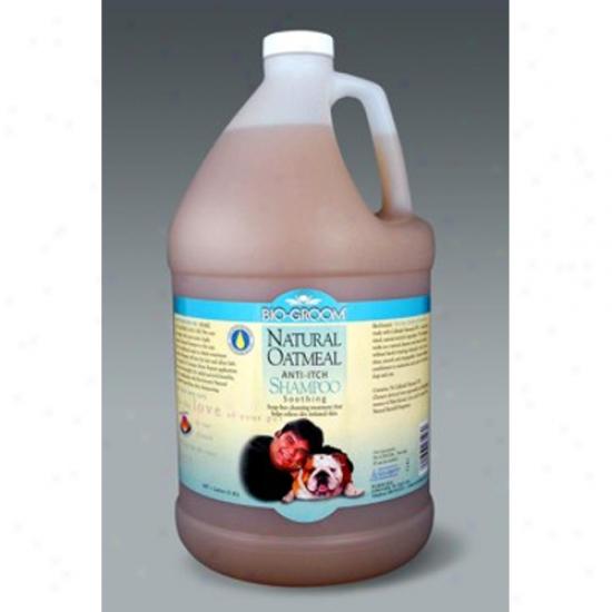 Bio-groom Naturai Oatmeal Shampoo, Gallon