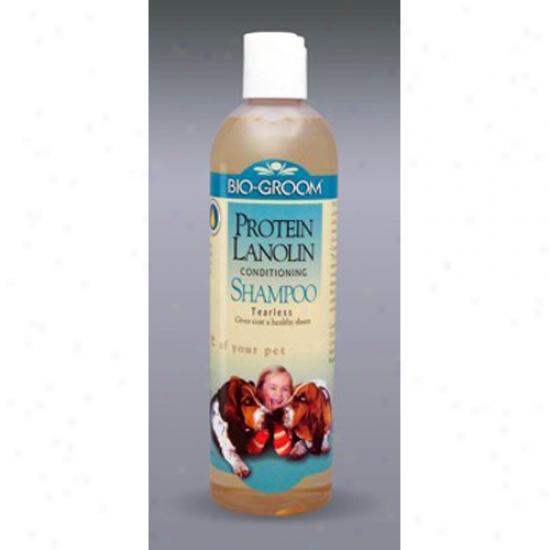 Bio-groom Protein Lanolin Shampoo, 12 Oz Concentrate 4:1