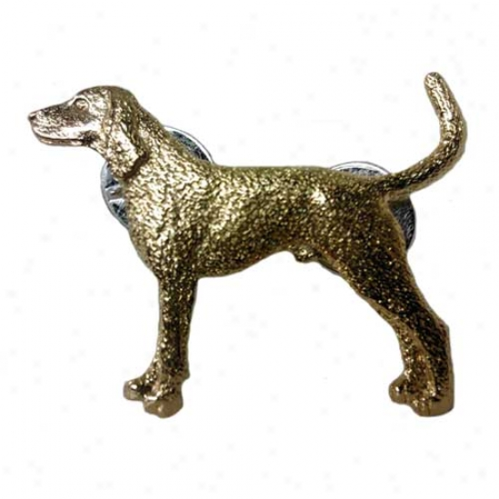 Black And Tan Coonhound Straw  24k Gold Plated