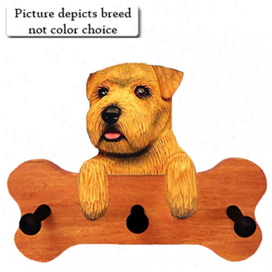 Black And Tan Norfolk Terrier Bone Hang Up Maple Accomplish